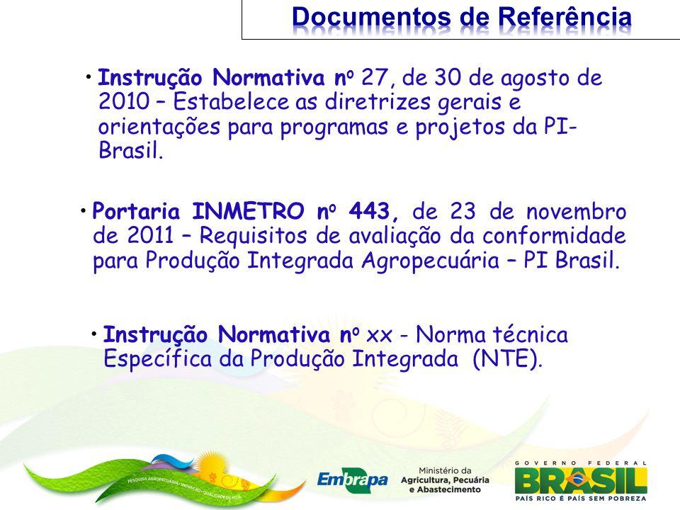 Instrução Normativa n o 27, de 30 de agosto de 2010 – Estabelece as diretrizes gerais e orientações para programas e projetos da PI- Brasil. Instrução