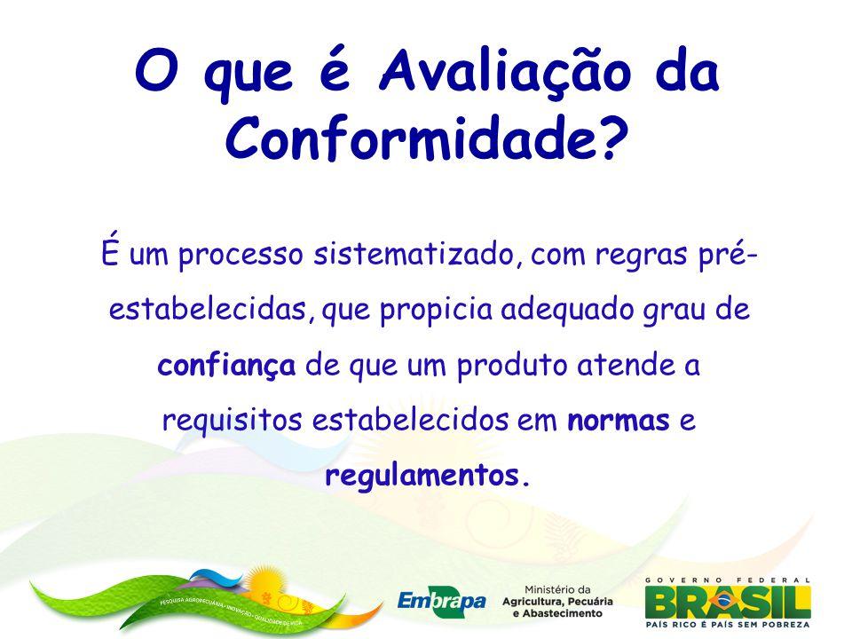 Instrução Normativa n o 27, de 30 de agosto de 2010 – Estabelece as diretrizes gerais e orientações para programas e projetos da PI- Brasil.
