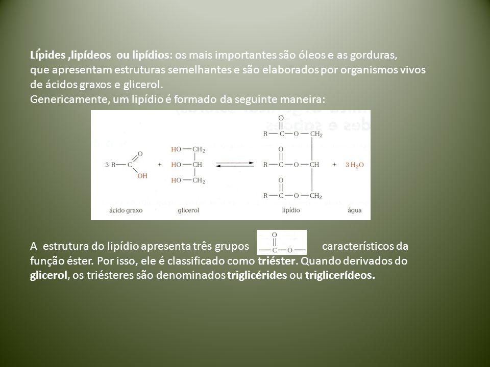 . Lípides,lipídeos ou lipídios: os mais importantes são óleos e as gorduras, que apresentam estruturas semelhantes e são elaborados por organismos viv