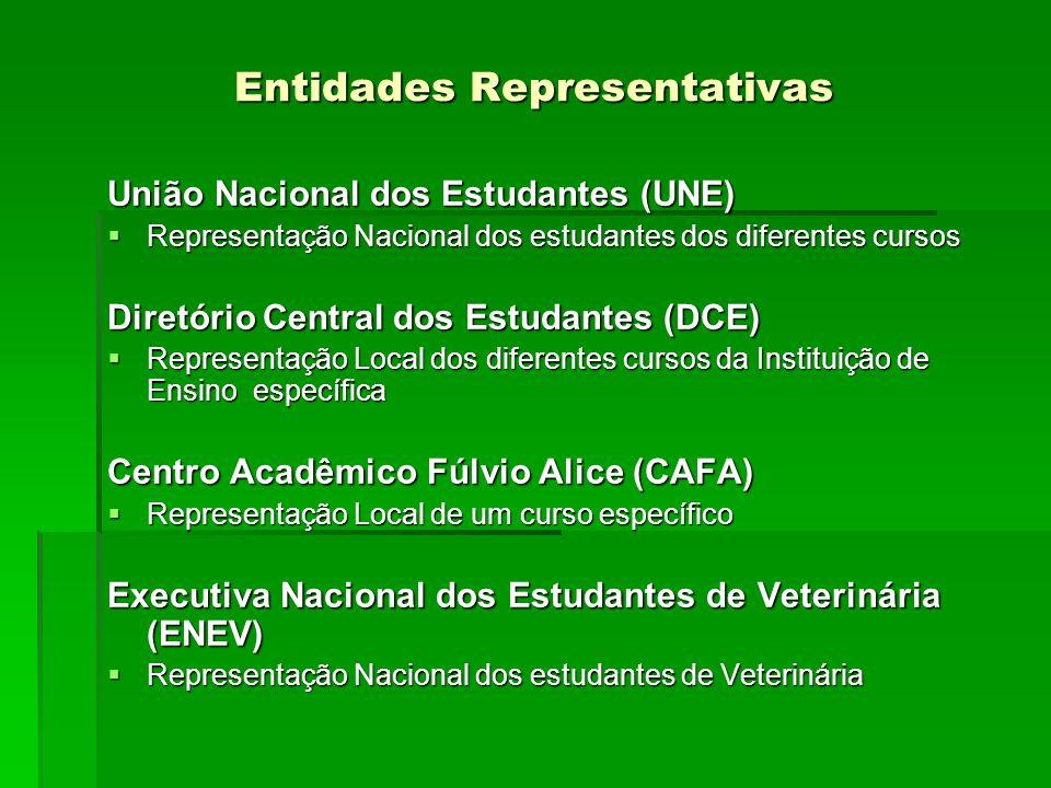 Entidades Representativas União Nacional dos Estudantes (UNE) Representação Nacional dos estudantes dos diferentes cursos Representação Nacional dos e