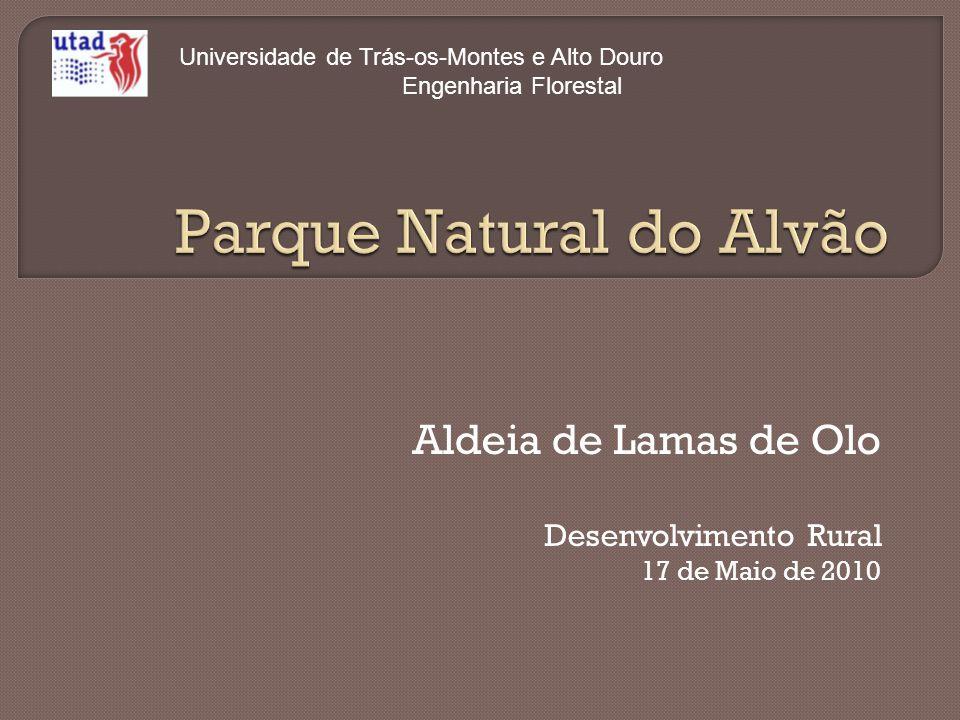 Aldeia de Lamas de Olo Desenvolvimento Rural 17 de Maio de 2010 Universidade de Trás-os-Montes e Alto Douro Engenharia Florestal