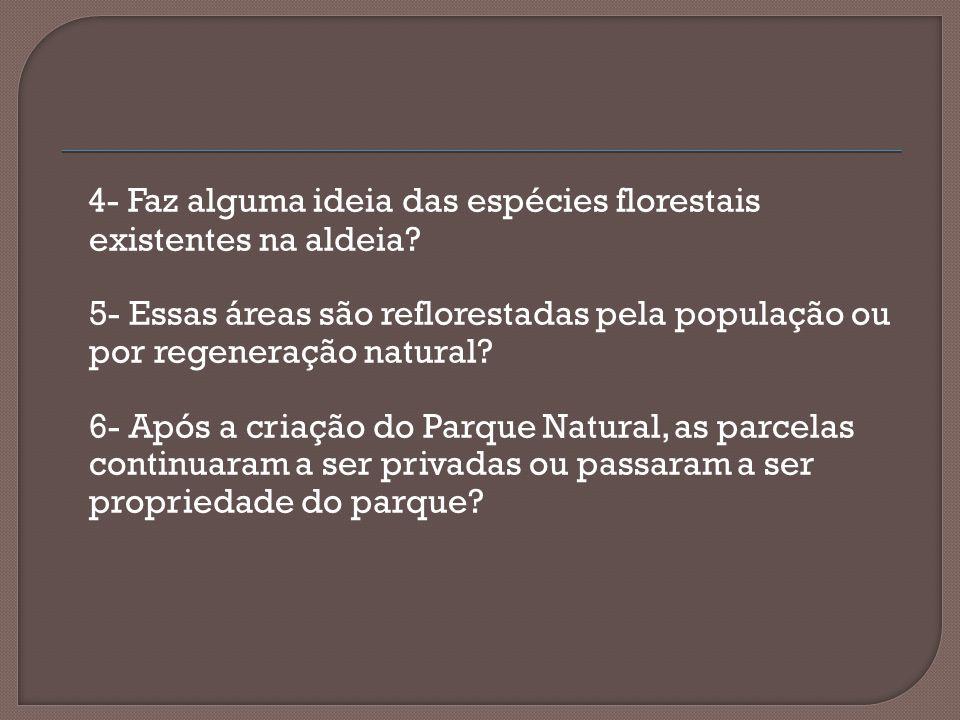 4- Faz alguma ideia das espécies florestais existentes na aldeia? 5- Essas áreas são reflorestadas pela população ou por regeneração natural? 6- Após