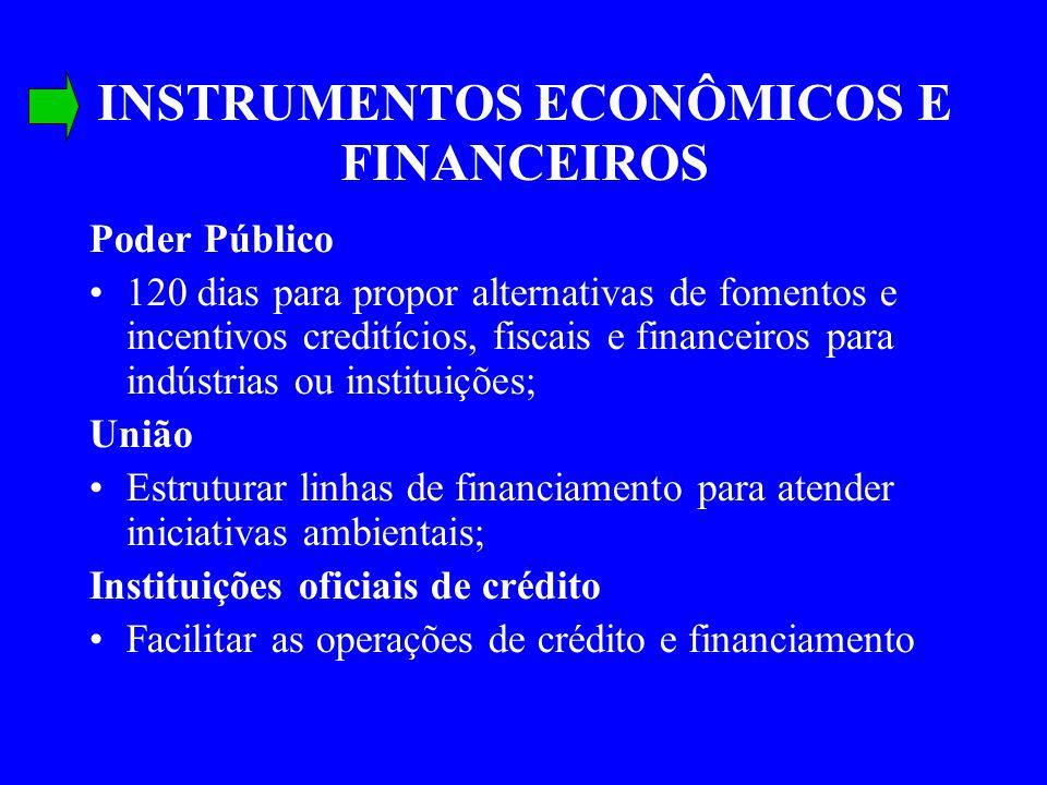 INSTRUMENTOS ECONÔMICOS E FINANCEIROS Poder Público 120 dias para propor alternativas de fomentos e incentivos creditícios, fiscais e financeiros para