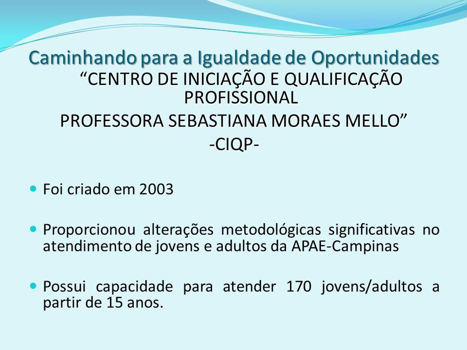 Caminhando para a Igualdade de Oportunidades CENTRO DE INICIAÇÃO E QUALIFICAÇÃO PROFISSIONAL PROFESSORA SEBASTIANA MORAES MELLO -CIQP- Foi criado em 2
