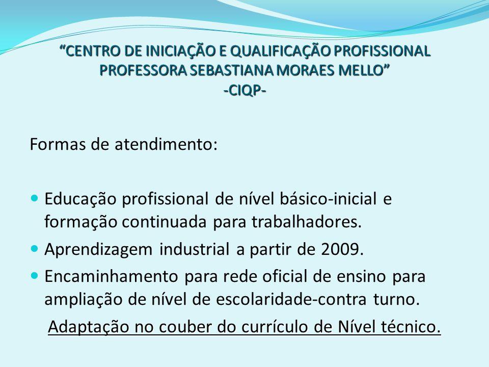 CENTRO DE INICIAÇÃO E QUALIFICAÇÃO PROFISSIONAL PROFESSORA SEBASTIANA MORAES MELLO -CIQP- Formas de atendimento: Educação profissional de nível básico