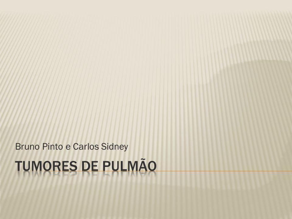 Bruno Pinto e Carlos Sidney