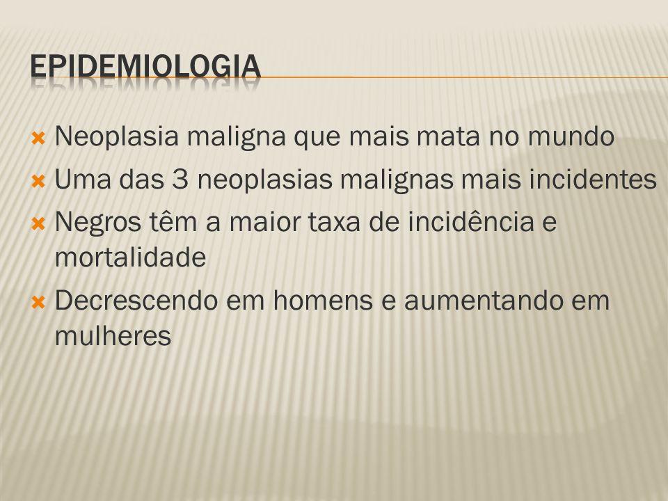 Neoplasia maligna que mais mata no mundo Uma das 3 neoplasias malignas mais incidentes Negros têm a maior taxa de incidência e mortalidade Decrescendo em homens e aumentando em mulheres