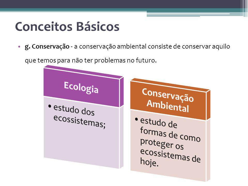 g. Conservação - a conservação ambiental consiste de conservar aquilo que temos para não ter problemas no futuro. Conceitos Básicos