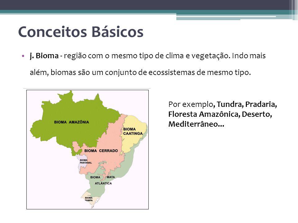 j.Bioma - região com o mesmo tipo de clima e vegetação.
