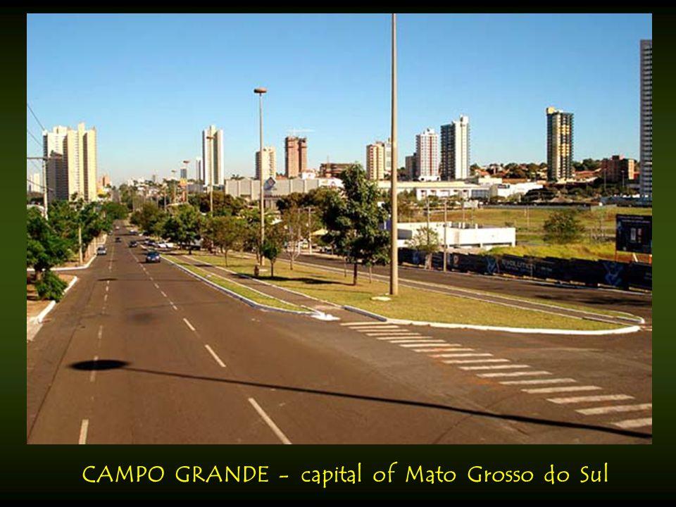 CAMPINAS - city in state of São Paulo