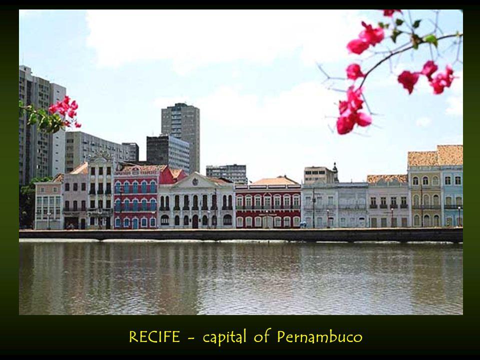 PORTO VELHO - capital of Rondonia