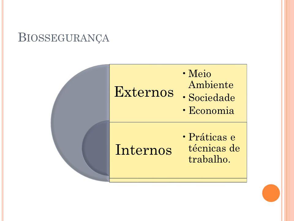 B IOSSEGURANÇA Externos Internos Meio Ambiente Sociedade Economia Práticas e técnicas de trabalho.