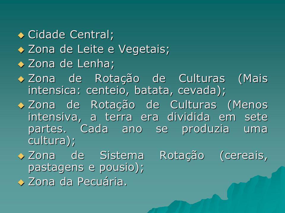 Cidade Central; Cidade Central; Zona de Leite e Vegetais; Zona de Leite e Vegetais; Zona de Lenha; Zona de Lenha; Zona de Rotação de Culturas (Mais in