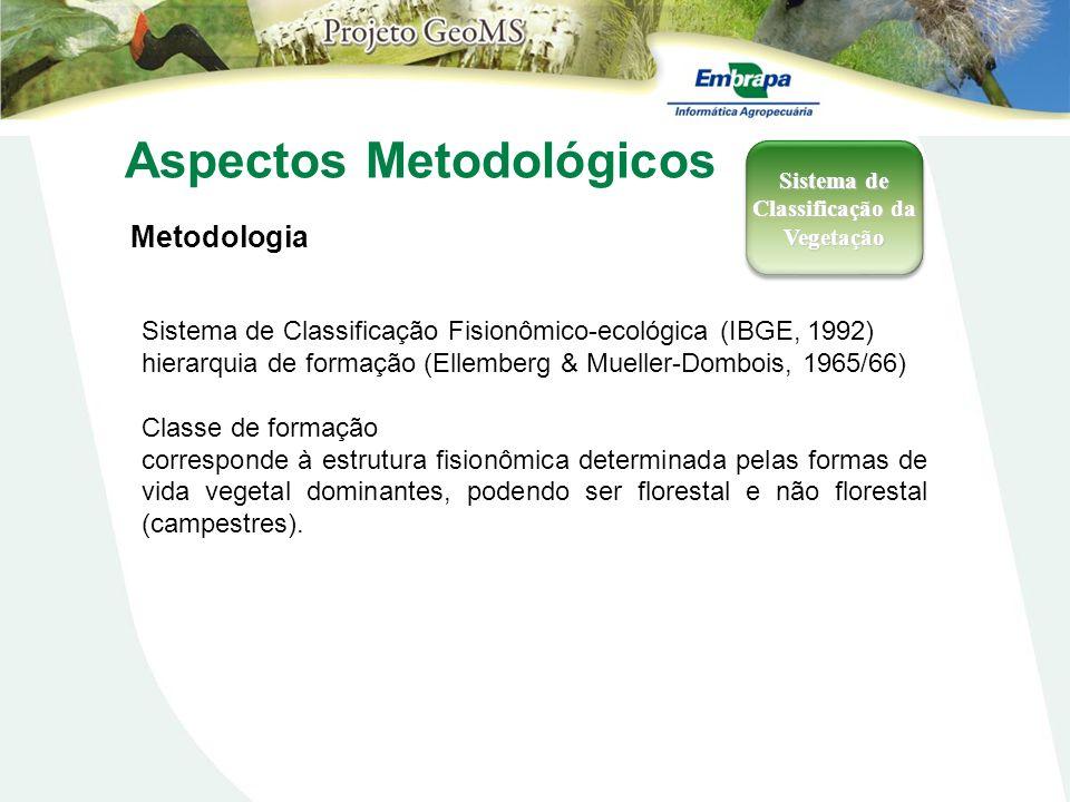 Aspectos Metodológicos Metodologia Sistema de Classificação da Vegetação Sistema de Classificação Fisionômico-ecológica (IBGE, 1992) hierarquia de for
