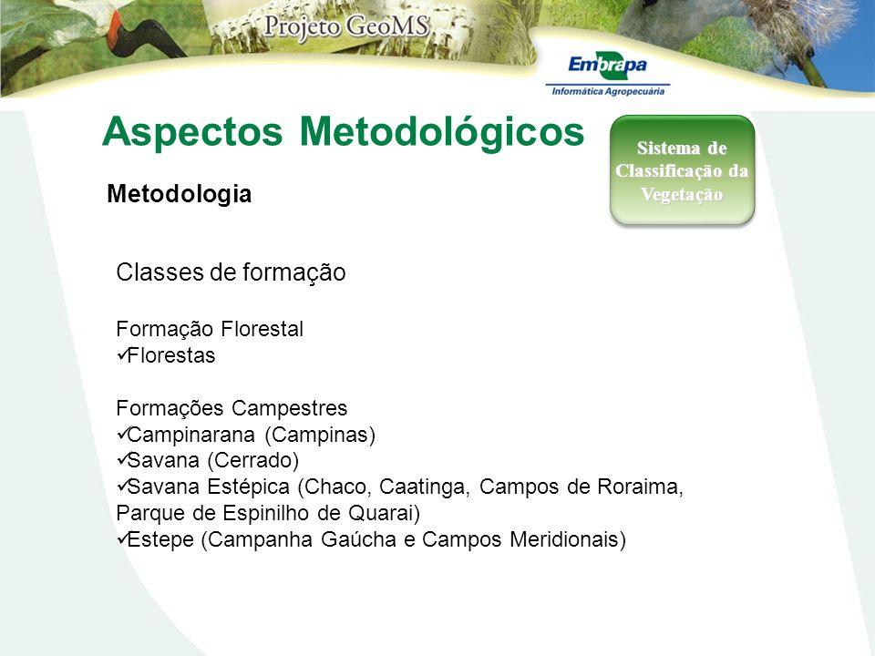 Aspectos Metodológicos Metodologia Sistema de Classificação da Vegetação Classes de formação Formação Florestal Florestas Formações Campestres Campina