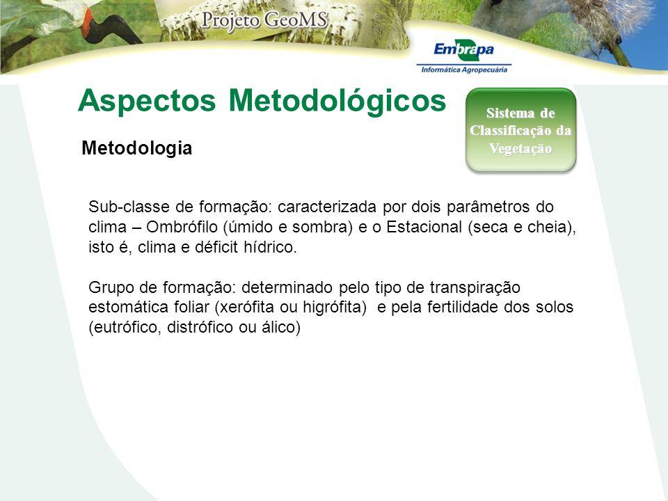 Aspectos Metodológicos Metodologia Sistema de Classificação da Vegetação Sub-classe de formação: caracterizada por dois parâmetros do clima – Ombrófil