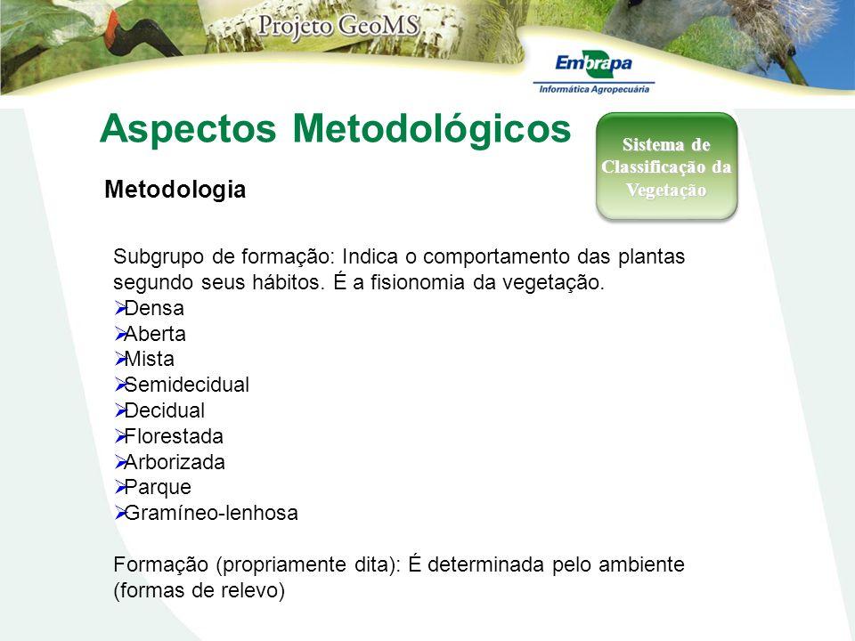 Aspectos Metodológicos Metodologia Sistema de Classificação da Vegetação Subgrupo de formação: Indica o comportamento das plantas segundo seus hábitos