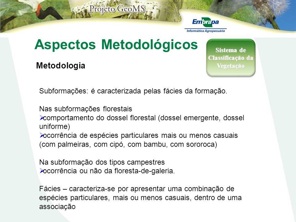Aspectos Metodológicos Metodologia Sistema de Classificação da Vegetação Subformações: é caracterizada pelas fácies da formação. Nas subformações flor