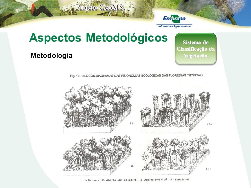 Aspectos Metodológicos Metodologia Sistema de Classificação da Vegetação