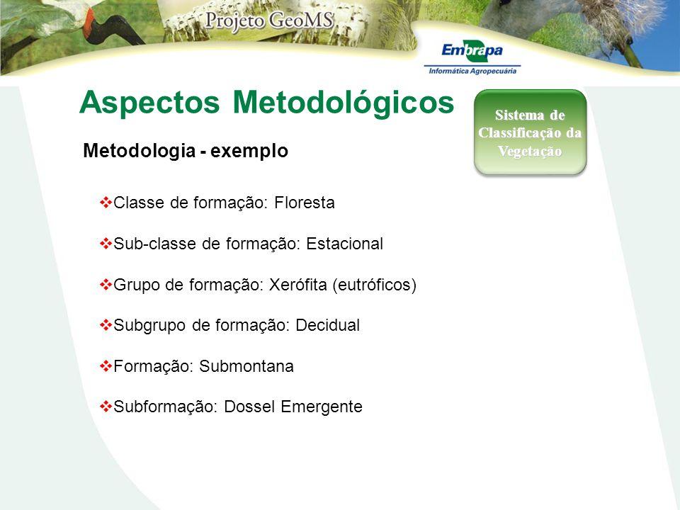 Aspectos Metodológicos Metodologia - exemplo Sistema de Classificação da Vegetação Classe de formação: Floresta Sub-classe de formação: Estacional Gru