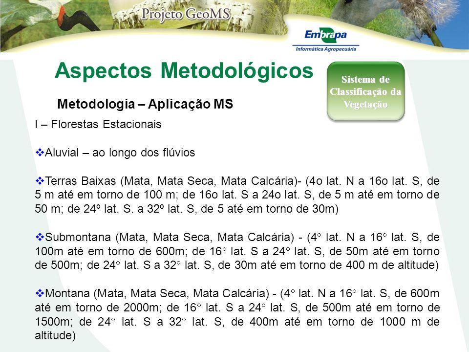 Aspectos Metodológicos Metodologia – Aplicação MS Sistema de Classificação da Vegetação I – Florestas Estacionais Aluvial – ao longo dos flúvios Terra