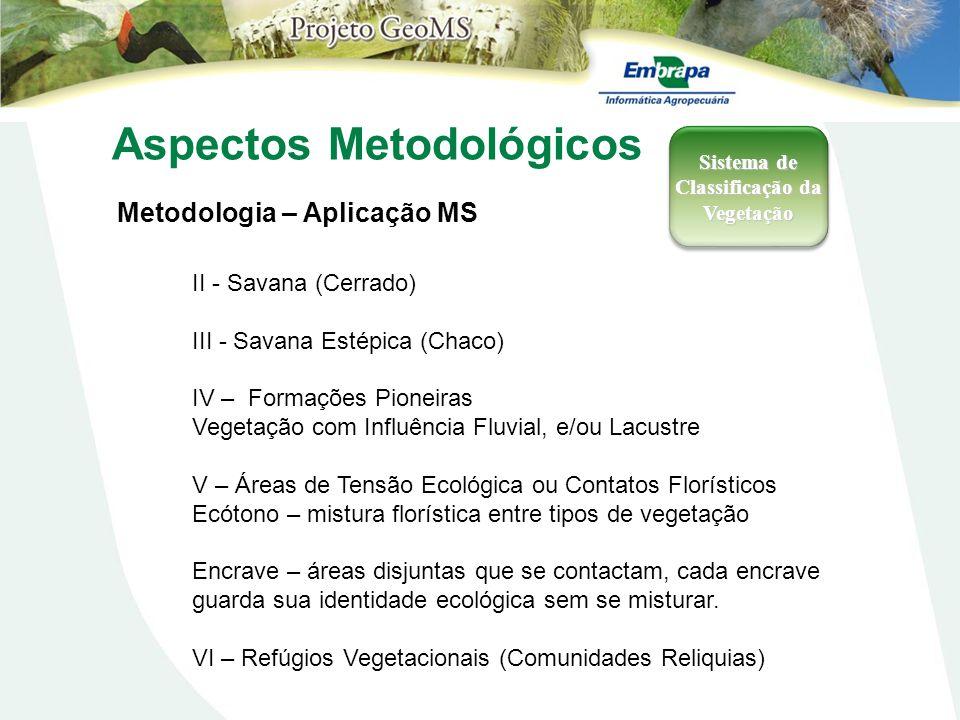 Aspectos Metodológicos Metodologia – Aplicação MS Sistema de Classificação da Vegetação II - Savana (Cerrado) III - Savana Estépica (Chaco) IV – Forma