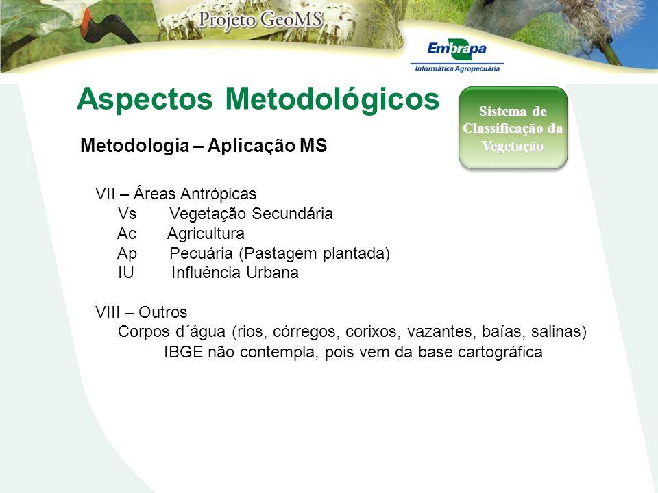 Aspectos Metodológicos Metodologia – Aplicação MS Sistema de Classificação da Vegetação VII – Áreas Antrópicas Vs Vegetação Secundária Ac Agricultura