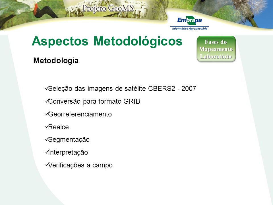 Aspectos Metodológicos Metodologia Fases do Mapeamento Laboratório Laboratório Seleção das imagens de satélite CBERS2 - 2007 Conversão para formato GR