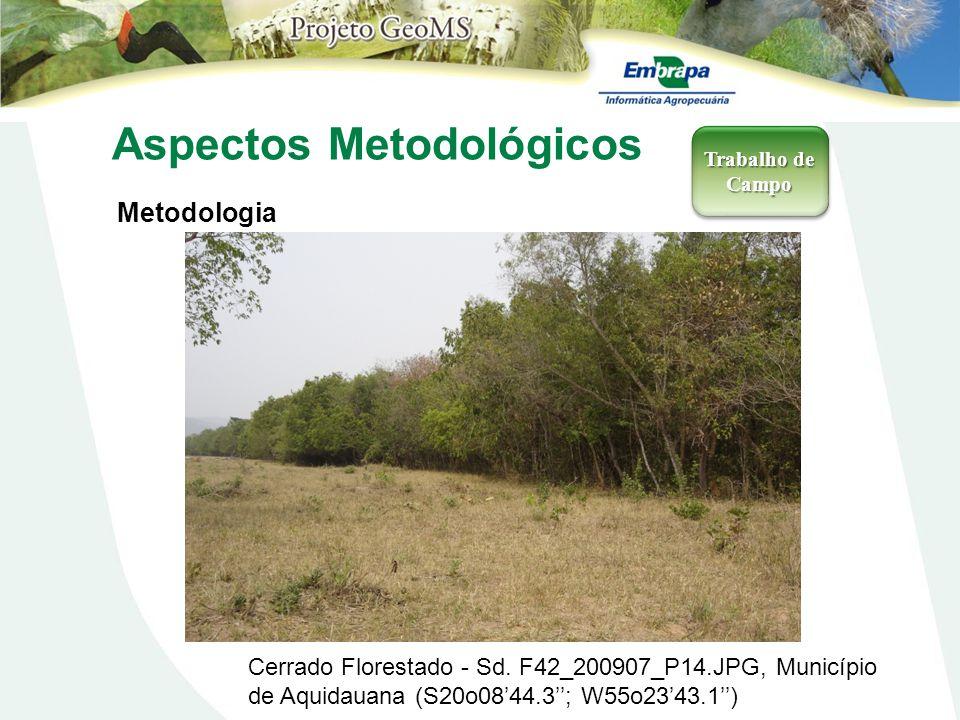 Aspectos Metodológicos Metodologia Trabalho de Campo Cerrado Florestado - Sd. F42_200907_P14.JPG, Município de Aquidauana (S20o0844.3; W55o2343.1)