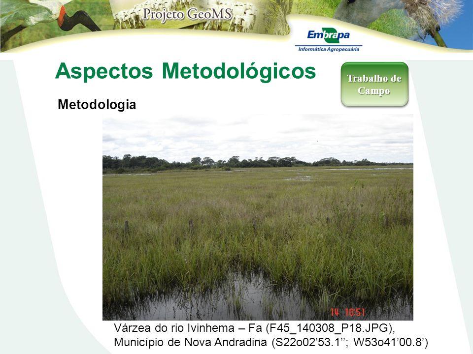 Aspectos Metodológicos Metodologia Trabalho de Campo Várzea do rio Ivinhema – Fa (F45_140308_P18.JPG), Município de Nova Andradina (S22o0253.1; W53o41