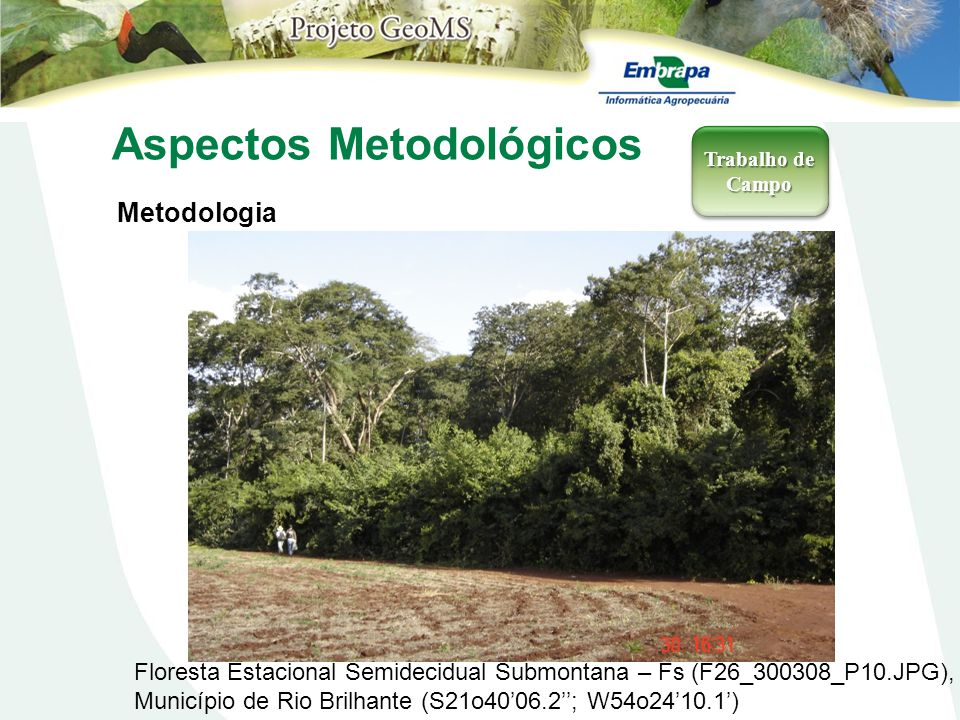 Aspectos Metodológicos Metodologia Trabalho de Campo Floresta Estacional Semidecidual Submontana – Fs (F26_300308_P10.JPG), Município de Rio Brilhante