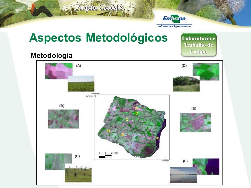Aspectos Metodológicos Metodologia Laboratório e Trabalho de Campo