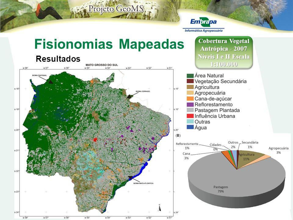 Fisionomias Mapeadas Resultados Cobertura Vegetal Antrópica - 2007 Níveis I e II Escala 1:100.000