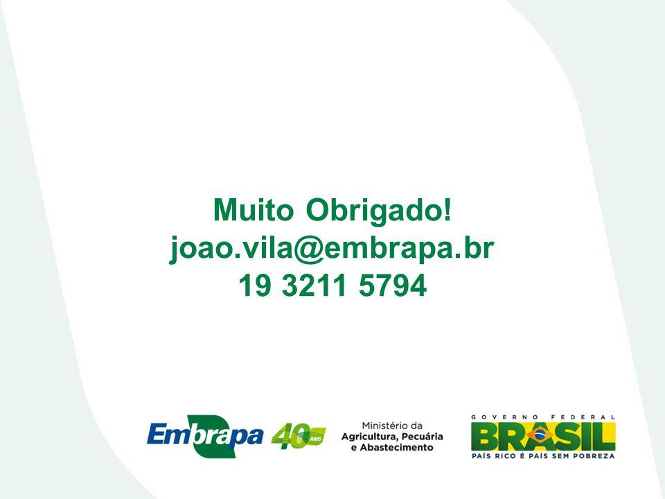 Muito Obrigado! joao.vila@embrapa.br 19 3211 5794