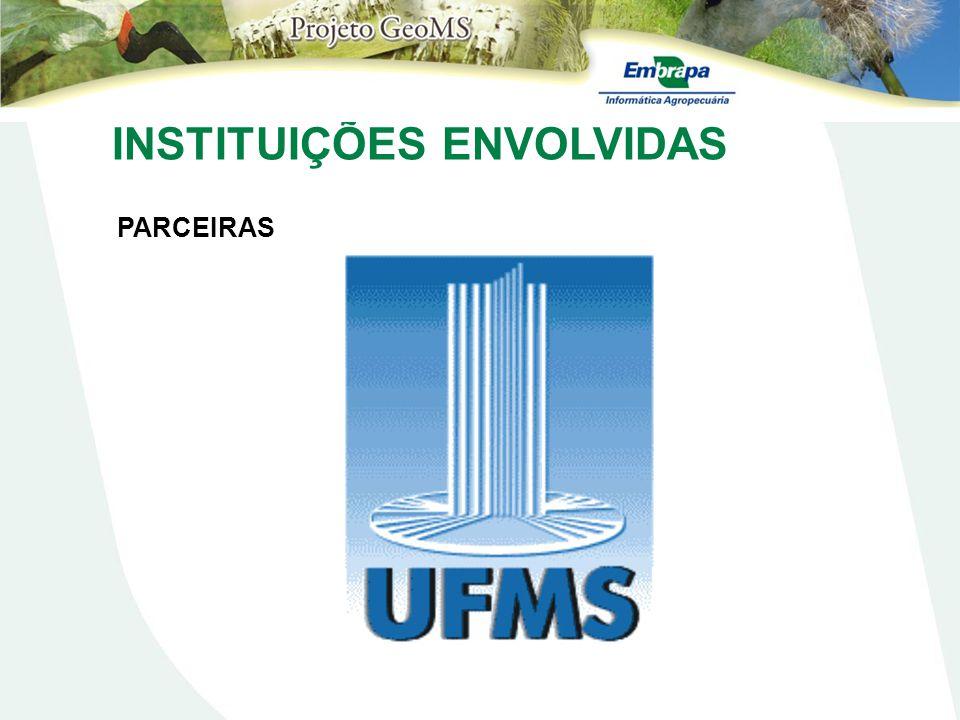 Fisionomias Mapeadas Resultados Cobertura Vegetal Natural - 2007 Níveis I e II Escala 1:100.000