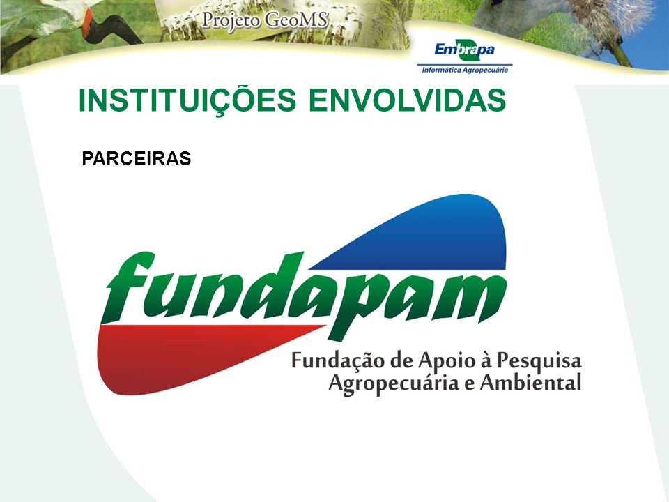 Aspectos Metodológicos Metodologia Trabalho de Campo Pinus - R (F94_250208_P39.JPG), Município de Ribas do Rio Pardo, (S20o5824.5; W53o4756.1)