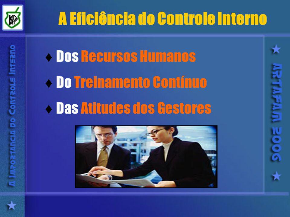A Eficiência do Controle Interno Dos Recursos Humanos Do Treinamento Contínuo Das Atitudes dos Gestores