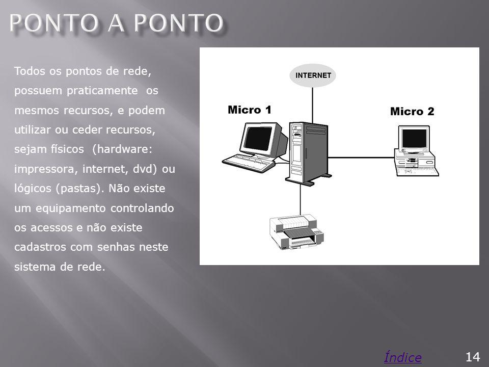 Todos os pontos de rede, possuem praticamente os mesmos recursos, e podem utilizar ou ceder recursos, sejam físicos (hardware: impressora, internet, dvd) ou lógicos (pastas).