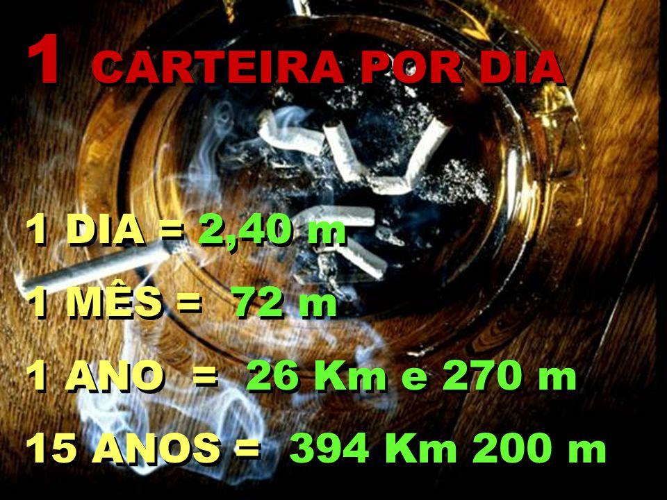 1 CARTEIRA POR DIA 1 DIA = 2,40 m 1 MÊS = 72 m 1 ANO = 26 Km e 270 m 15 ANOS = 394 Km 200 m 1 CARTEIRA POR DIA 1 DIA = 2,40 m 1 MÊS = 72 m 1 ANO = 26 Km e 270 m 15 ANOS = 394 Km 200 m