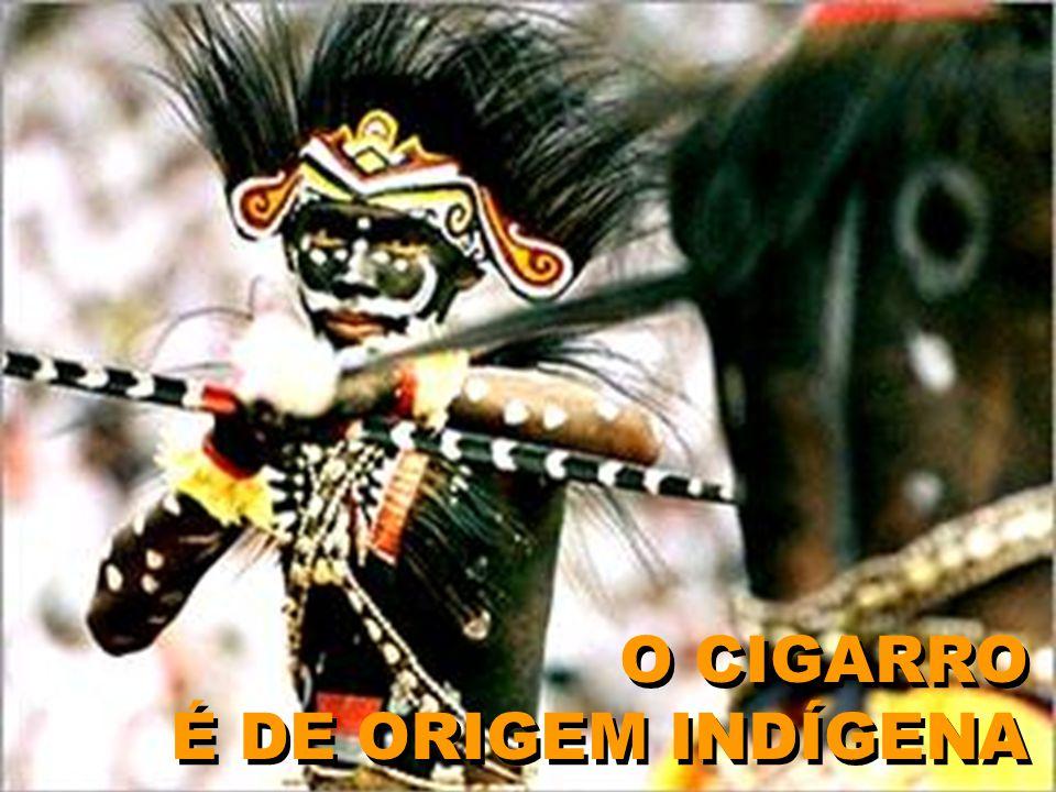 O CIGARRO É DE ORIGEM INDÍGENA O CIGARRO É DE ORIGEM INDÍGENA