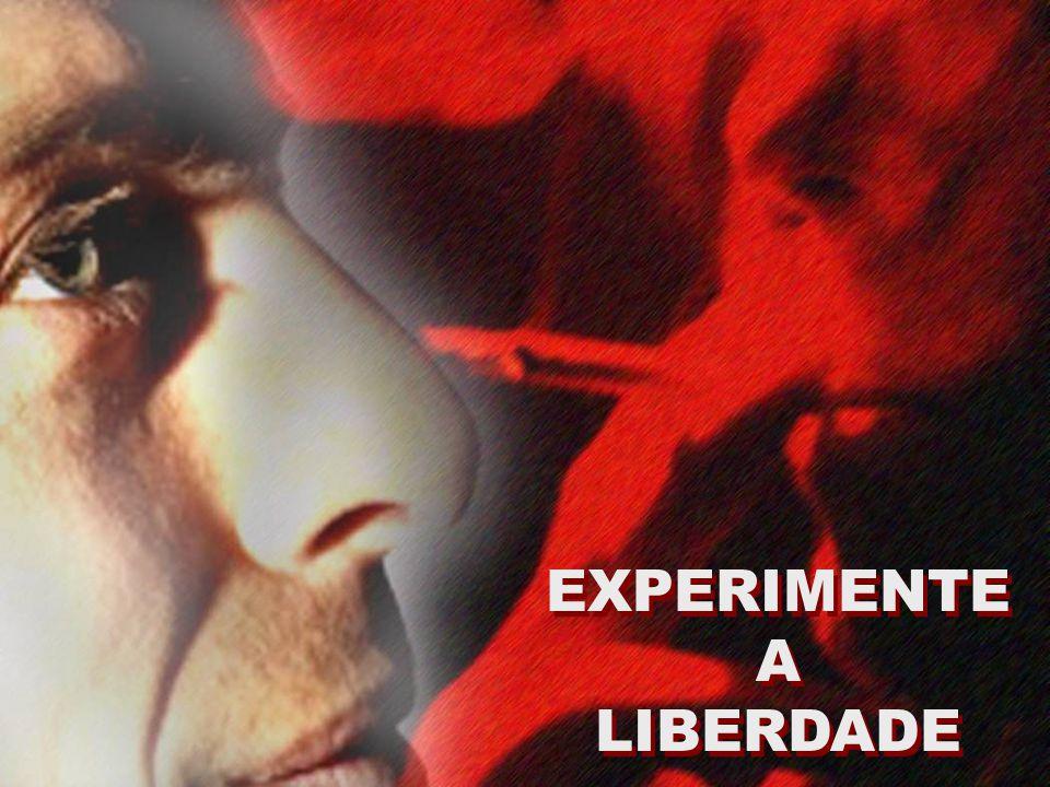 EXPERIMENTE A LIBERDADE EXPERIMENTE A LIBERDADE