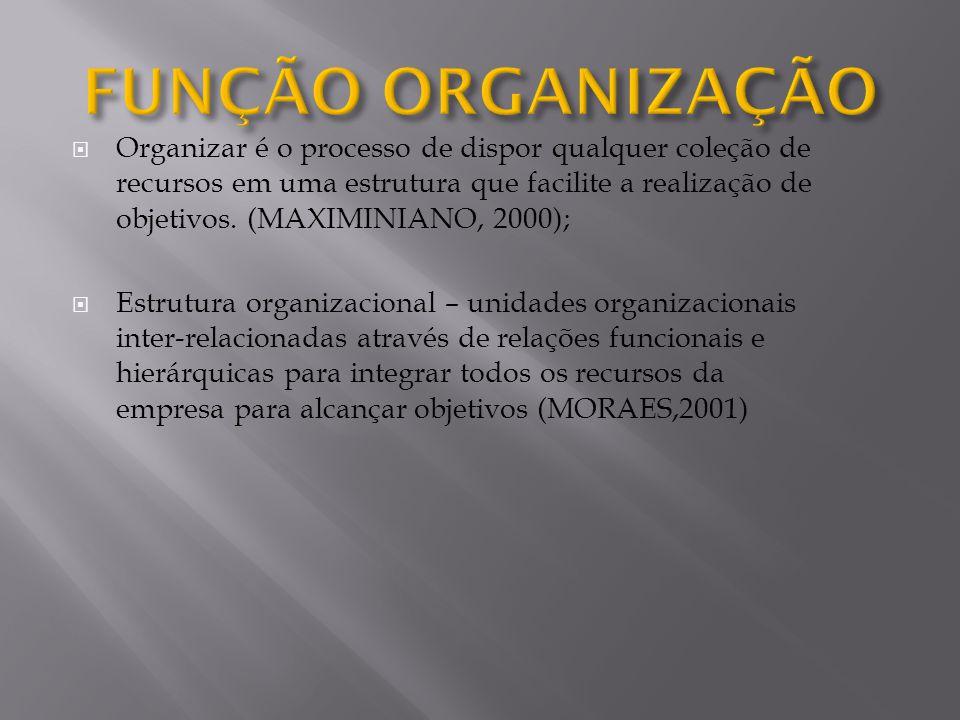 Organizar é o processo de dispor qualquer coleção de recursos em uma estrutura que facilite a realização de objetivos. (MAXIMINIANO, 2000); Estrutura