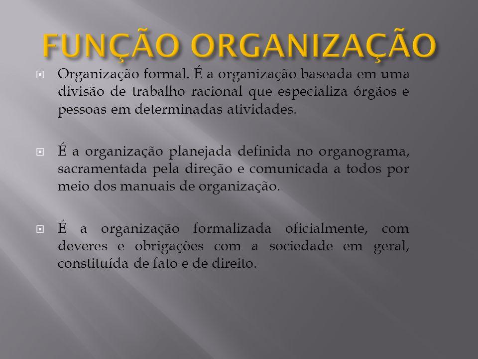 Organização formal. É a organização baseada em uma divisão de trabalho racional que especializa órgãos e pessoas em determinadas atividades. É a organ