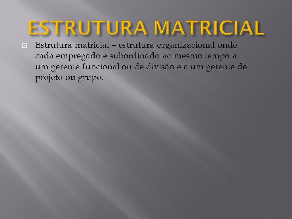 Estrutura matricial – estrutura organizacional onde cada empregado é subordinado ao mesmo tempo a um gerente funcional ou de divisão e a um gerente de