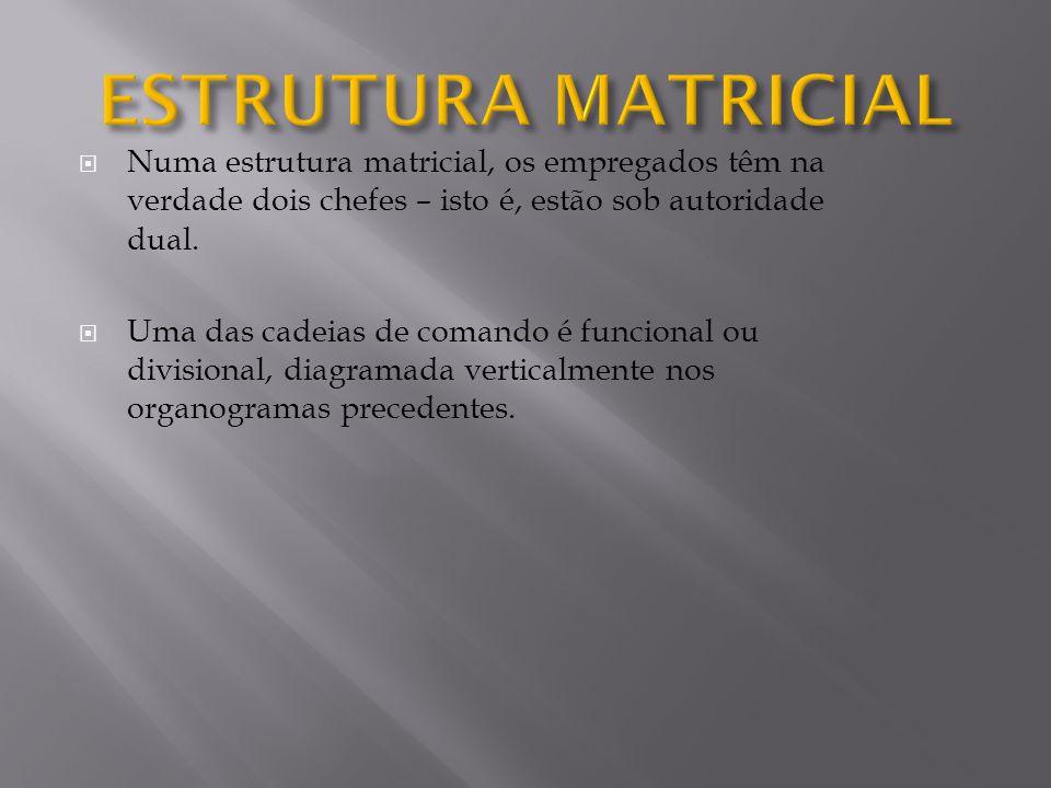 Numa estrutura matricial, os empregados têm na verdade dois chefes – isto é, estão sob autoridade dual. Uma das cadeias de comando é funcional ou divi