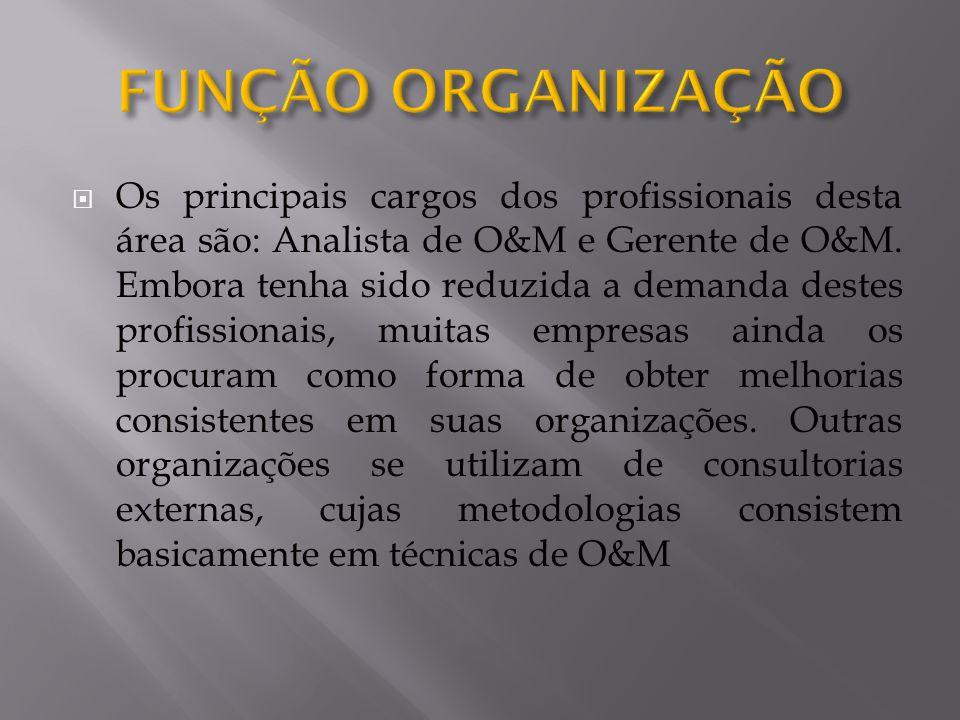 Os principais cargos dos profissionais desta área são: Analista de O&M e Gerente de O&M. Embora tenha sido reduzida a demanda destes profissionais, mu