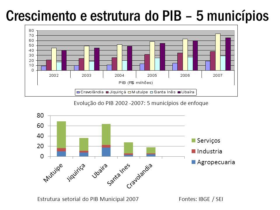 Crescimento e estrutura do PIB – 5 municípios Evolução do PIB 2002 -2007: 5 municípios de enfoque Estrutura setorial do PIB Municipal 2007 Fontes: IBG