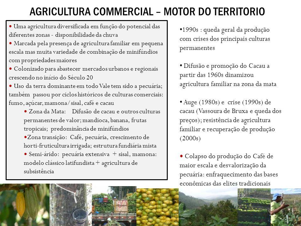 AGRICULTURA COMMERCIAL – MOTOR DO TERRITORIO 1990s : queda geral da produção com crises dos principais culturas permanentes Difusão e promoção do Caca