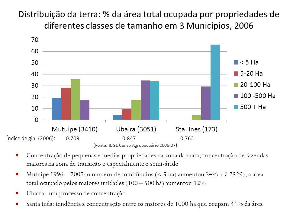 Distribuição da terra: % da área total ocupada por propriedades de diferentes classes de tamanho em 3 Municípios, 2006 Concentração de pequenas e medi
