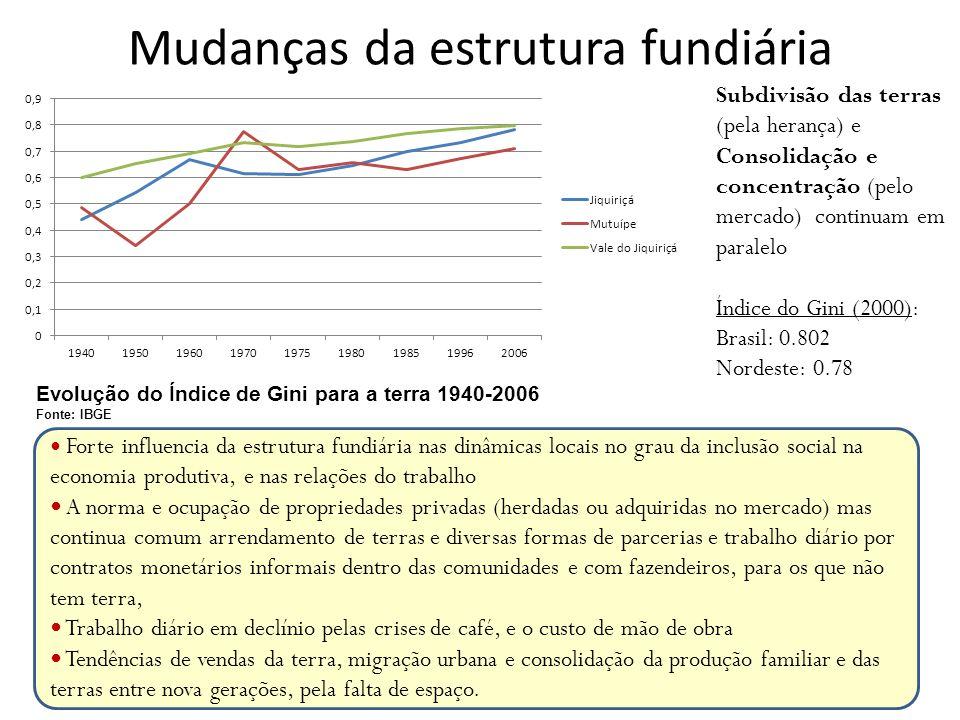 Mudanças da estrutura fundiária Forte influencia da estrutura fundiária nas dinâmicas locais no grau da inclusão social na economia produtiva, e nas r